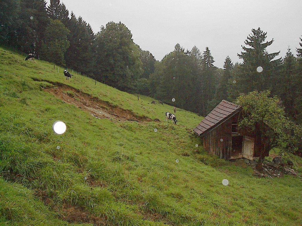 Engeler Ochsenbühl 07.jpg